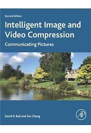 Intelligent Image and Video Compression: Communicating Pictures, 2nd Edition