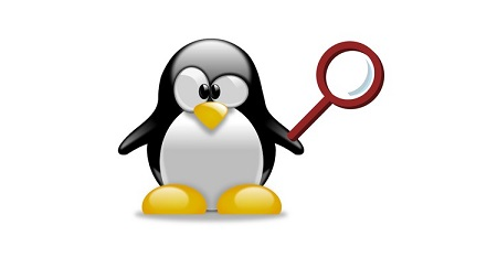 Searching in Linux: Regular Expressions for Beginners